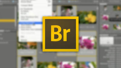 Organize Your Images with Adobe® Bridge