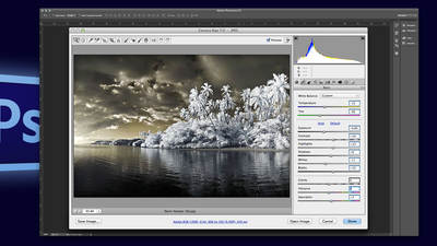 Adobe® Photoshop® Camera Raw: Instant Image Special Effects