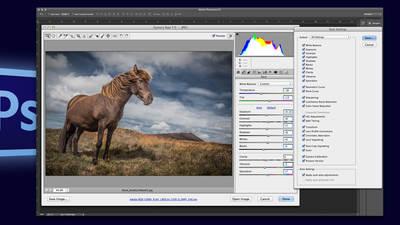 Automating Photoshop Camera Raw