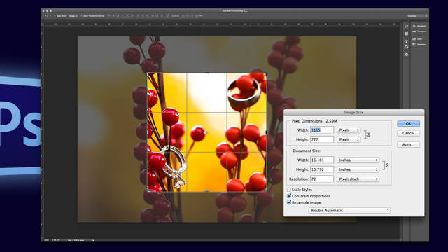 adobe photoshop image size resolution and cropping with khara plicanic