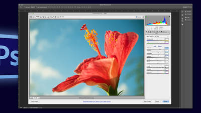 Yielding Perfect Exposures from Adobe® Camera Raw and Adobe® Photoshop® Creative Cloud®