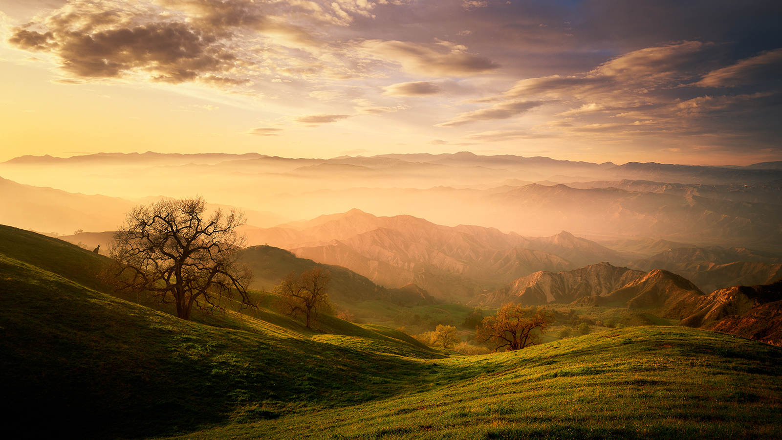 Landscape Photography Course with Marc Muench